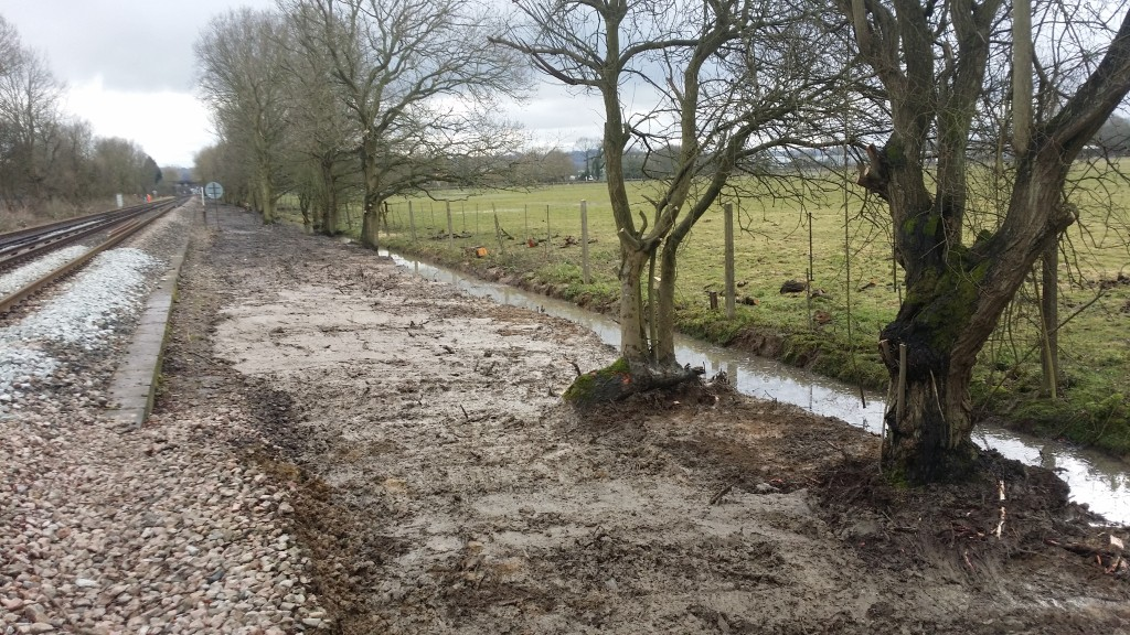 For the first time in years water can drain off the adjacent land - the farmer is very happy!